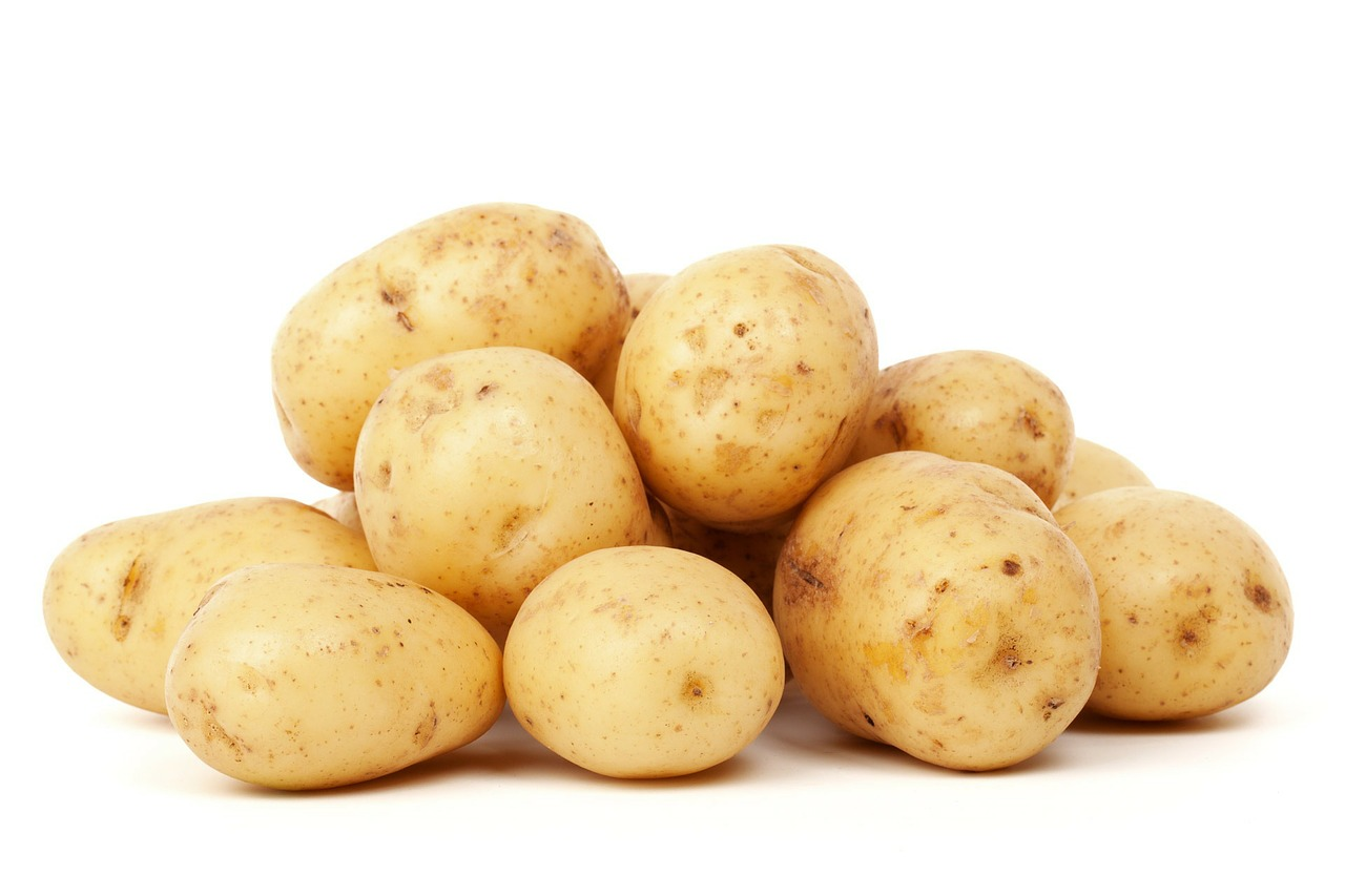 Scientists develop modified CRISPR-Cas9 system for tetraploid potato