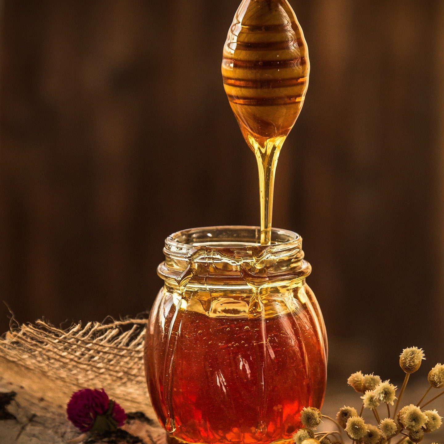 Engineered Bacteria Produces BeeFree Honey