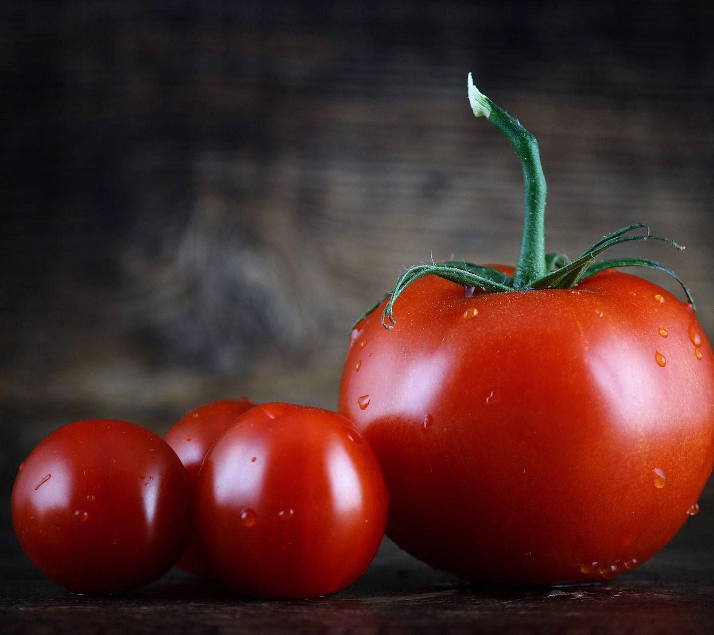 Симбиоза увеличава добива на оранжерийни домати