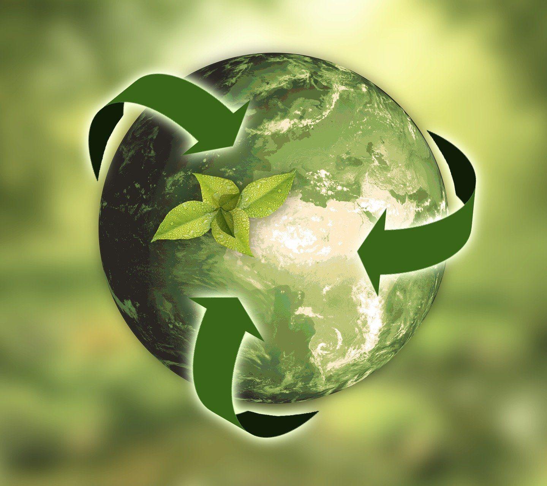 Растенията се борят с изменението на климата чрез натрупване на повече въглероден диоксид